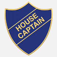 House Capatin Badge